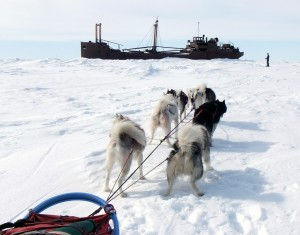 Sledding on Hudson Bay, 2012.